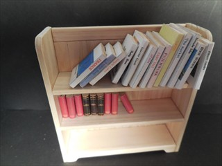 bookshelf (11)