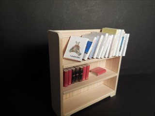 bookshelf (12)